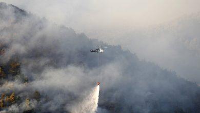 صورة مصرع شخص خلال عمليات إخماد حريق غابات كبير في تركيا